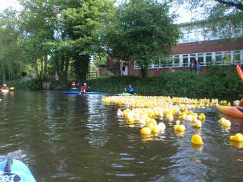the annual duck race in colchester
